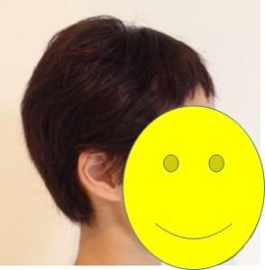 2015_7_30_hair_fix