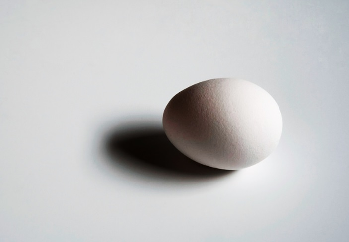 卵という1つの細胞が物語っていること 遺伝子組み換え飼料やストレスの影響の怖さ