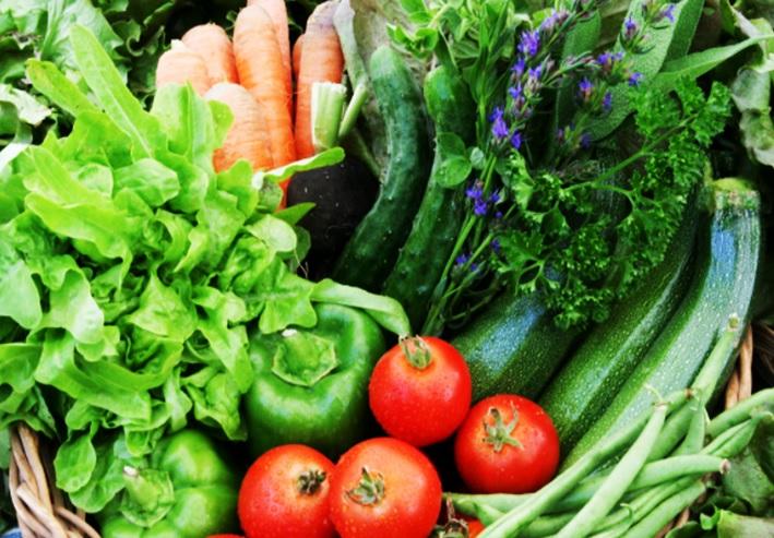 一年中置いてある野菜ではなく「季節の野菜」を食べ続けるメリット 生物の本来の食