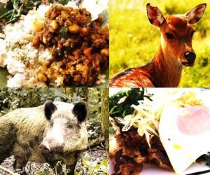 鹿とシシ肉のオンパレード 鹿カツ・シシのドライカレー・シシ野菜炒め